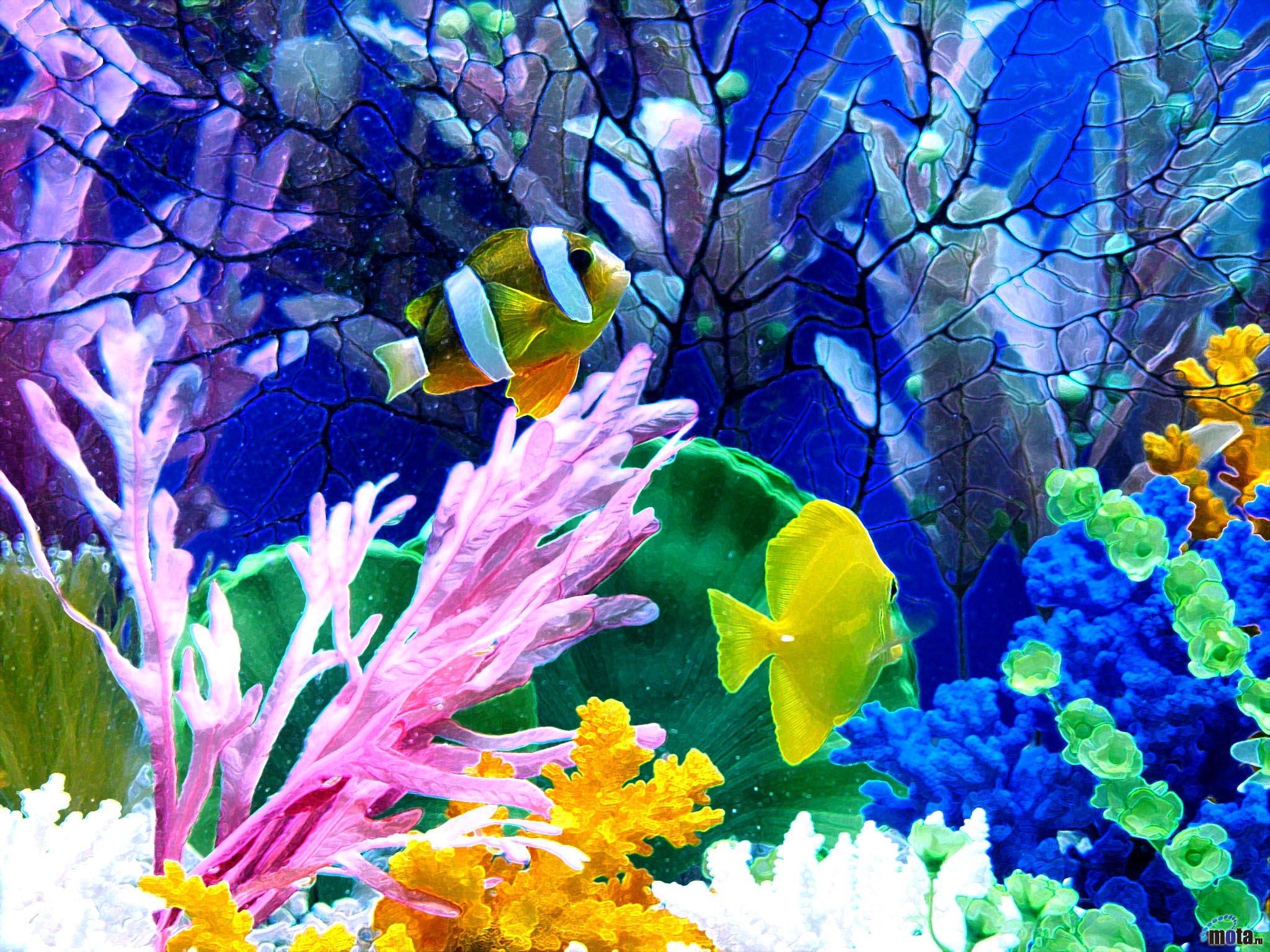 Aquarium for Fond ecran aquarium